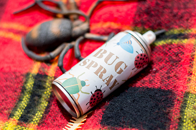 silly string bug spray, Camp activities, counselors, birthday party games, merit badges, Summer Camp Tablescape, camping, s'mores, kids party, lanterns, trail mix, camping party, summer camp party