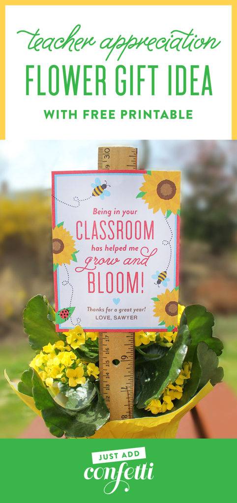 """Bloom in your Classroom"" Flower Teacher Gift Idea, teacher appreciation, flower gift, free printable, teacher gift, flower for teacher, Just Add Confetti, Just Add Confetti printable, Being in your classroom has helped me grow and bloom, grow and bloom, bloom in your classroom, end of the school year gift, spring gift, spring flower"