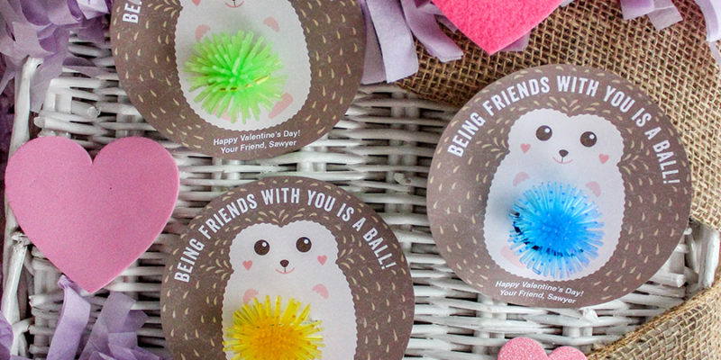 """""""Being Friends with You is a Ball"""" Hedgehog Kids Valentine"""